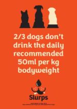 2 out of 3 dogs don't drink the daily recommended amount